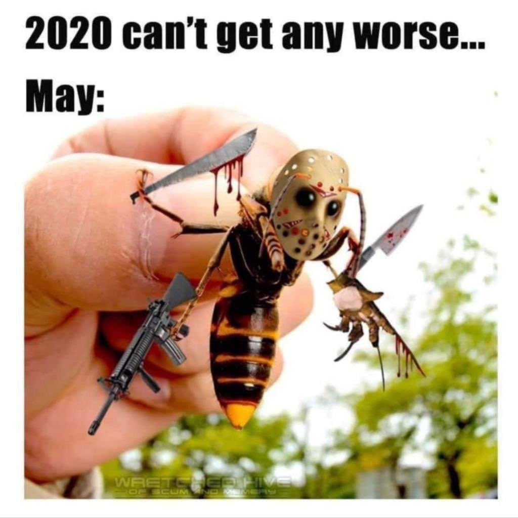 Murder hornet to the extreme.